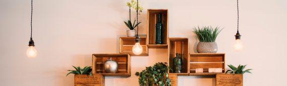 Crashkurs Möbelbau – Einfache Regale für jede Wohnung